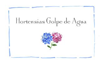 Hortensias Golpe de Agua