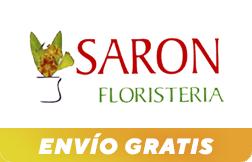Saron