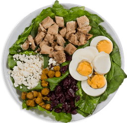 🥗 Pura proteína