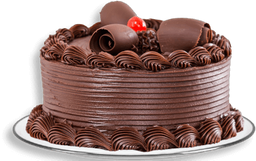 PROMO: 15% OFF en Torta de Chocolate Mediana