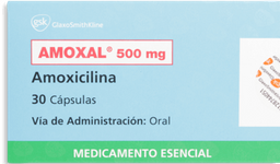 Amoxal 500Mg Glaxo