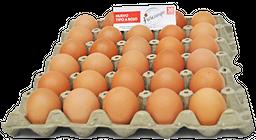 Huevos Frescampo X30