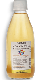 Kombucha Koghi Citrus 280Ml