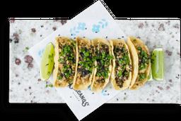Tacos Todos Santos