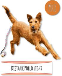 Dieta de Pollo Light
