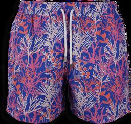 Pantaloneta classic cut branch 3