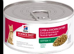 Feline kitten liver chicken lata 5.5 oz