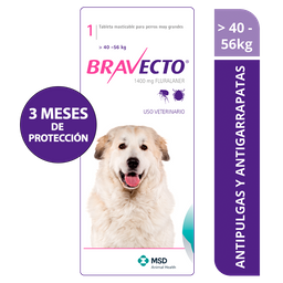 Bravecto 40 a 56 kg  - 1400mg x 1 tableta