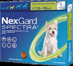 NEXGARD SPECTRA M 1 CHEWAB X 10 (7.5-15kg)