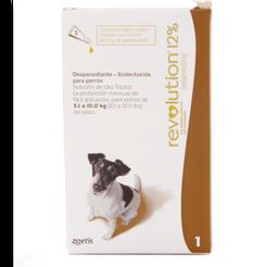 Revolution cafe perro (de 5.1 a 10 kg)