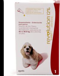 Revolution rojo perro (de 10 a 20 kg)
