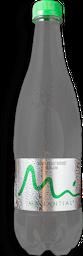 Botella Agua Manantial