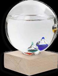Termometro Galileo
