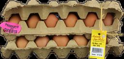 Huevo Aa Rojo San Remo Cb X 45 Un