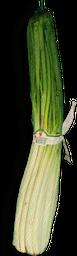 Cebolla Larga X Kl
