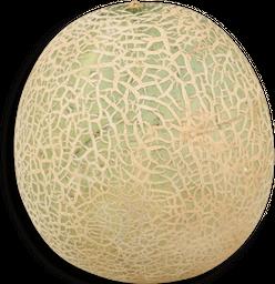 Melon Caribeam X Kl