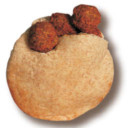 Falafel en Pita