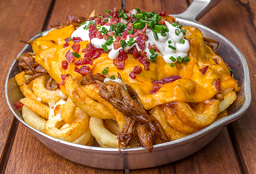🥔Pulled Pork Fries