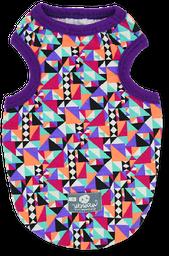 Esqueleto triángulos multicolor