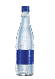 Agua Botella con Gas 300 ml