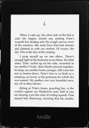 Lector Digital Amazon Kindle Paperwhite con Luz 4gb - Negro