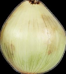 Cebolla Cabezona Blanca
