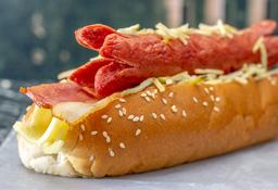 Perro Bacon