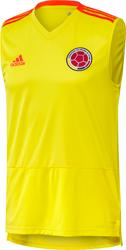 Camiseta De Entrenamiento Sin Mangas Selección Colombia 2018