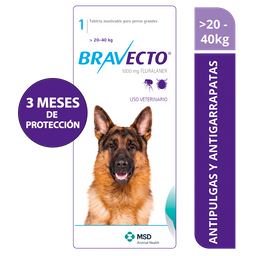 Bravecto 20 a 40 kg - 1000 mg x 1 tableta