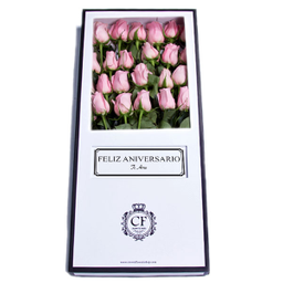 Capri 24 Rosas caja blanca