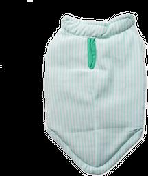 Chaleco Verde Reversible Rayas