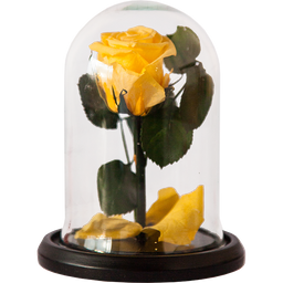 Rosa Encantada Mini Amarilla