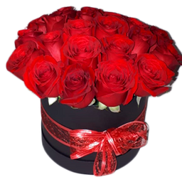 Redonda x 20 Rosas