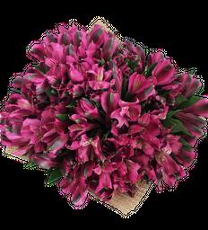 Bouquet de Alstros Fucsias