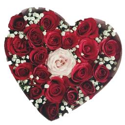 Together - Rosas rojas y blanca