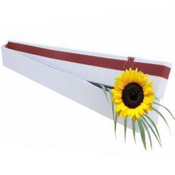 Sunshine - Solitario girasol