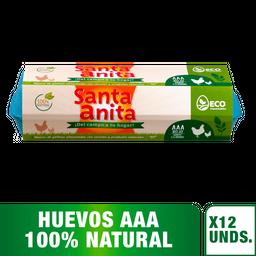 Santa Anita Huevo Rojo Tipo Aaa Carton