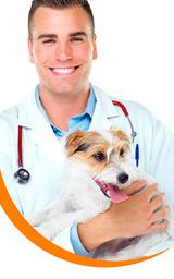 Consulta básica e Inyectología