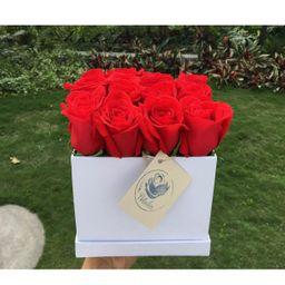 Caja cuadrada blanca 16 rosas rojas