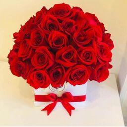 Caja cuadrada blanca 50 rosas rojas