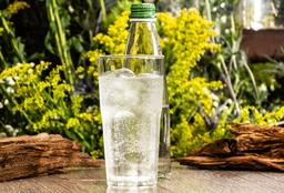 Agua Sierra Fria Con Gas 300 ml