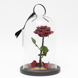 Rosa Encantada Roja