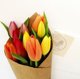 Cono de tulipanes de colores