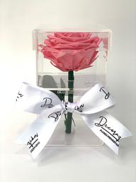 Caja Pandora Rosada