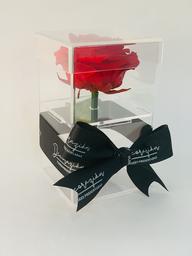 Caja Pandora Roja