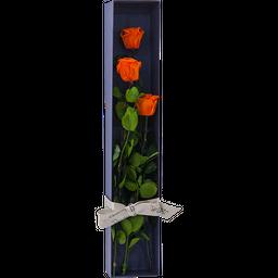 Caja Rosas x 3 Naranja
