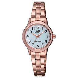 Reloj Q&Q Q861J004Y Mujer
