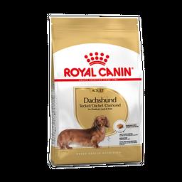 Royal canin Dachhund 1,5Kg