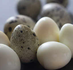 Porcion de Huevos de Codornis