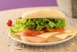 Sándwich de Carne Completo